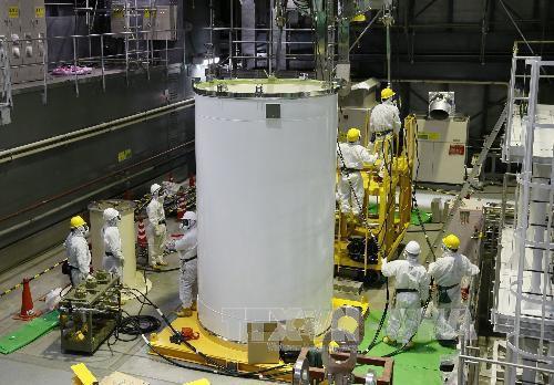 សៀវភៅសឆ្នាំ២០១៦របស់ជប៉ុនសង្កត់ធ្ងន់ទៅលើការស្វែងរកមូលហេតុនៃគ្រោះ មហន្តរាយនុយក្លេអ៊ែរ Fukushima - ảnh 1