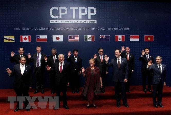CPTPP បង្កលក្ខណៈឲ្យវៀតណាមបន្តធ្វើសមាហរណកម្មអន្តរជាតិនៅកម្រិតថ្មី - ảnh 1