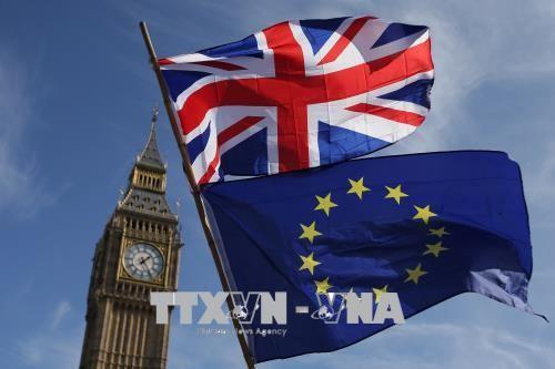 EU បញ្ចុះបញ្ចូលអង់គ្លេសជាសមាជិកសហភាពពន្ធដារដដែល ក្រោយ Brexit  - ảnh 1