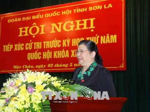 អនុប្រធានរដ្ឋសភា លោកស្រី Tong Thi Phong អញ្ជើញជួបប្រាស្រ័យជាមួយអ្នកបោះឆ្នោតនៅស្រុក Moc Chau  - ảnh 1