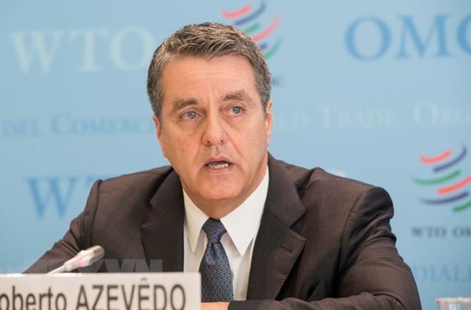 អគ្គនាយក លោក Roberto Azevedo បានសង្កត់ធ្ងន់ទៅលើភាពចាំបាច់ក្នុងការធ្វើកំណែទម្រង់ WTO - ảnh 1