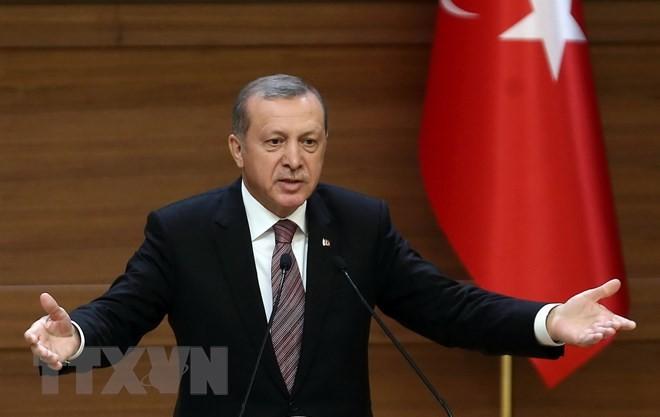 លោក Recep Tayyip Erdogan ដណ្ដើមបានជ័យជំនះក្នុងការបោះឆ្នោតប្រធានាធិបតីទួរគី - ảnh 1