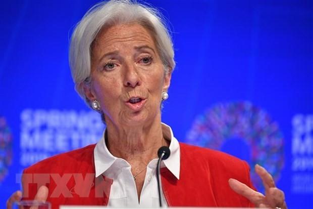 IMF ព្រមានថាសេដ្ឋកិច្ចសកលកំពុងស្ថិតក្នុងពេលវេលារសើប - ảnh 1