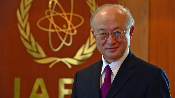 IAEA ដាស់តឿនប្រទេសមហាអំណាចនានាឱ្យមានកិច្ចសន្ទនាជាមួយអ៊ីរ៉ង់ - ảnh 1