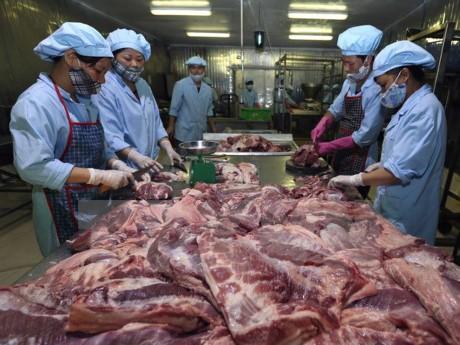 Hội thảo quản lý chuỗi thịt lợn giữa Việt Nam và Đan Mạch - ảnh 1
