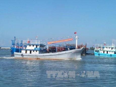 Thành lập đội cứu nạn cứu hộ và bảo vệ môi trường biển  - ảnh 1