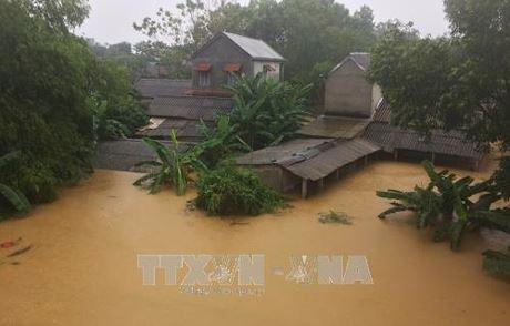 Hội Chữ thập đỏ Việt Nam cứu trợ khẩn cấp các tỉnh bị ảnh hưởng nặng nề do bão Damrey - ảnh 1