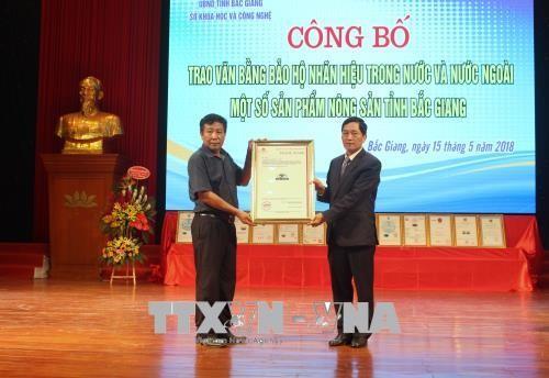 Bắc Giang: Trao văn bằng bảo hộ nhãn hiệu cho các sản phẩm nông sản tiêu biểu - ảnh 1
