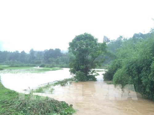 Các địa phương tiếp tục khắc phục nhanh hậu quả bão Sơn Tinh - ảnh 1