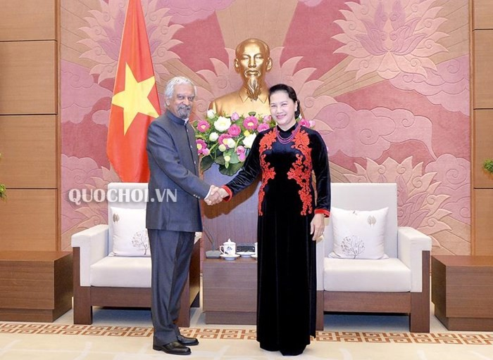 Chủ tịch Quốc hội tiếp Điều phối viên thường trú Liên hợp quốc, Trưởng đại diện UNICEF tại Việt Nam - ảnh 1