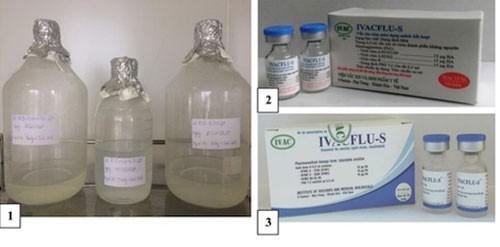 Việt Nam được WHO đặt hàng sản xuất vắc xin cúm mùa - ảnh 1