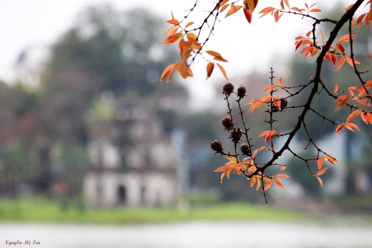 Bình chọn Hà Nội là một trong 17 điểm đến thành phố hàng đầu thế giới 2018 - ảnh 1