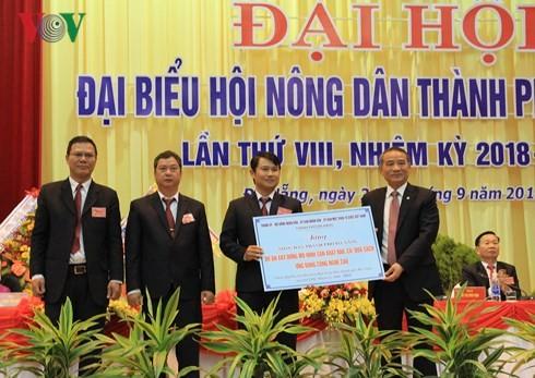 Đà Nẵng: Hơn 10 tỷ đồng hỗ trợ nông dân xây dựng mô hình  sản xuất rau củ quả sạch ứng dụng công nghệ cao - ảnh 1