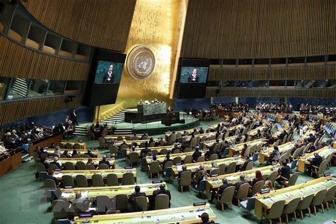 Việt Nam tham gia các phiên họp của Ủy ban Pháp lý và Ủy ban các vấn đề kinh tế và tài chính Đại hội đồng LHQ khóa 73 - ảnh 1