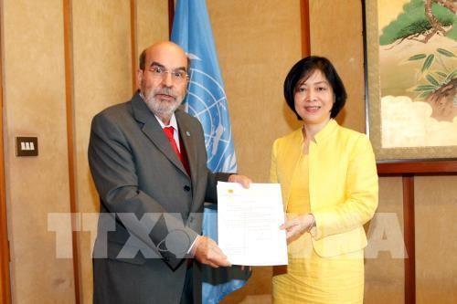 Việt Nam tiếp tục là đối tác quan trọng của FAO - ảnh 1