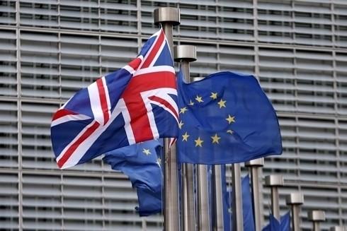 Gian nan tìm kiếm sự đồng thuận về Brexit - ảnh 2