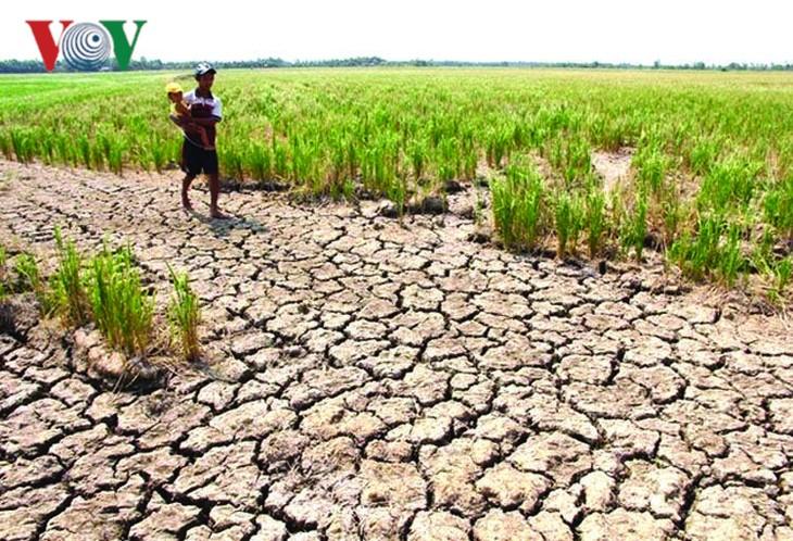Mực nước sông Mekong thấp kỷ lục đe dọa các nước hạ nguồn - ảnh 1