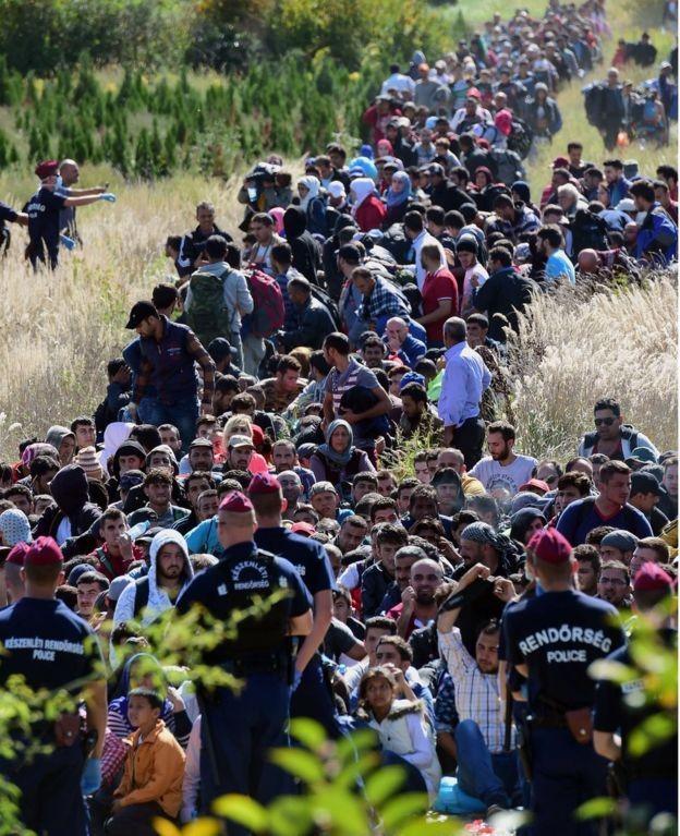 Венгрия сообщила о закрытии границы с Хорватией - ảnh 1