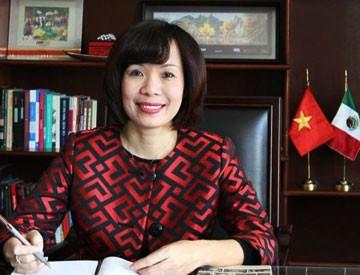 Мексика и Вьетнам расширяют сотрудничество на городском уровне - ảnh 1