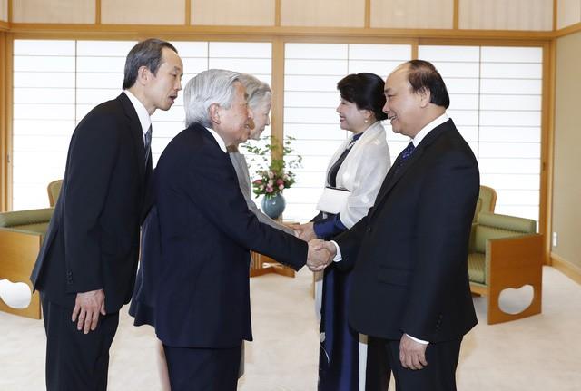 Премьер Вьетнама Нгуен Суан Фук встретился с императором и императрицей Японии - ảnh 1