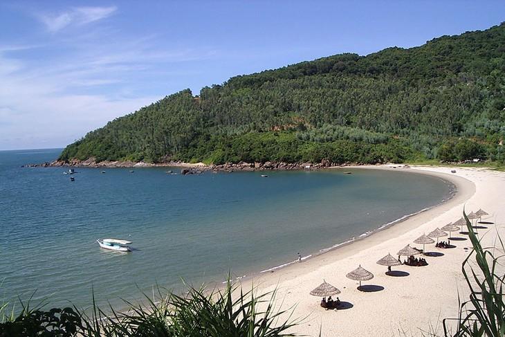Провинция Куангнгай эффективно использует свой туристический потенциал - ảnh 2