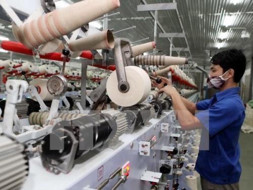 Доля частного сектора экономики в ВВП Вьетнама составляет примерно 45% - ảnh 1