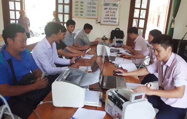 Уезд Куангбинь провинции Хазянг эффективно использует льготные кредиты для развития сельского хозяйства - ảnh 1