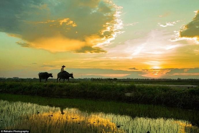 ความงามของเวียดนามจากมุมมองของช่างภาพฝรั่งเศส - ảnh 1