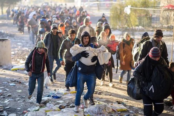 จำนวนผู้อพยพเข้ายุโรปอาจเพิ่มขึ้น๑ล้านคนในปี๒๐๑๖ - ảnh 1