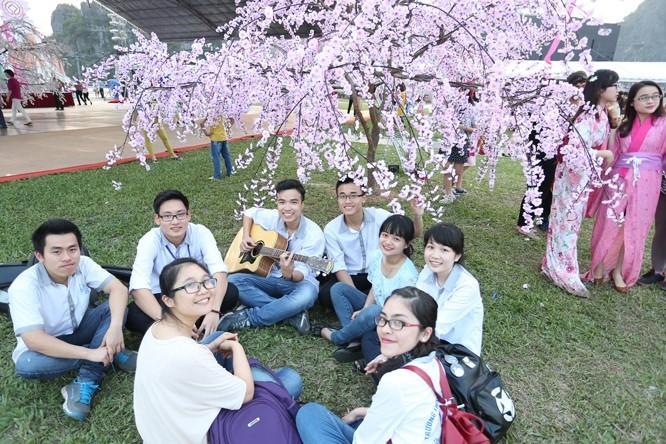 เปิดงานเทศกาลดอกซากุระ-ดอกเหมยสีเหลืองเอียนตื๋อปี๒๐๑๖ - ảnh 1