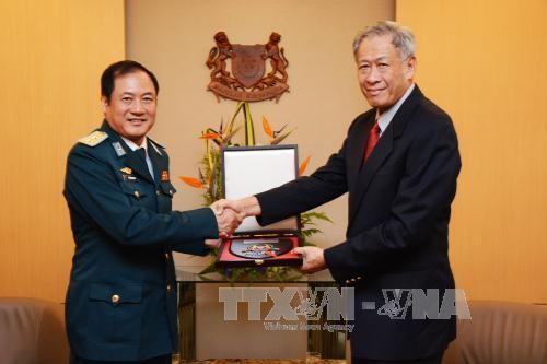 สิงคโปร์ให้ข้อสังเกตว่า อาเซียนมีพื้นฐานแทรกแซงปัญหาทะเลตะวันออก - ảnh 1
