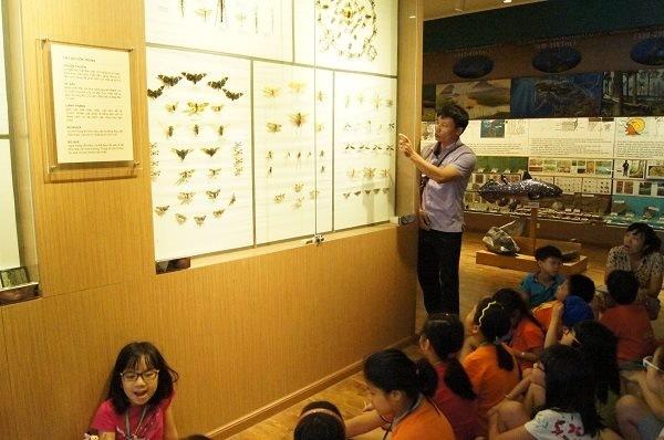 กิจกรรมค้นคว้าธรรมชาติในพิพิธภัณฑ์ธรรมชาติวิทยาเวียดนาม  - ảnh 1