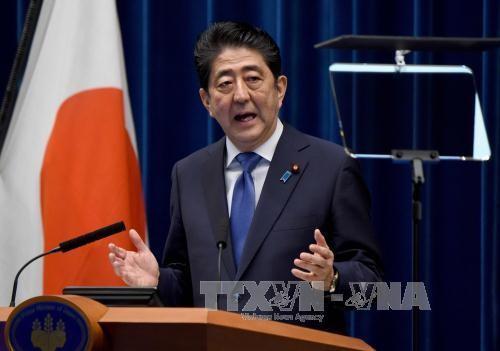 การเลือกตั้งก่อนกำหนดในญี่ปุ่น- ก้าวเดินที่สำคัญของนายกรัฐมนตรี ชินโซ อาเบะ - ảnh 1
