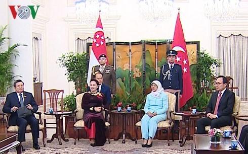 ประธานสภาแห่งชาติเวียดนามเข้าพบประธานาธิบดีและนายกรัฐมนตรีสิงคโปร์ - ảnh 1