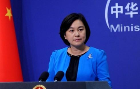 จีนให้คำมั่นผลักดันความร่วมมือกับอาเซียนใน3เสาหลัก - ảnh 1