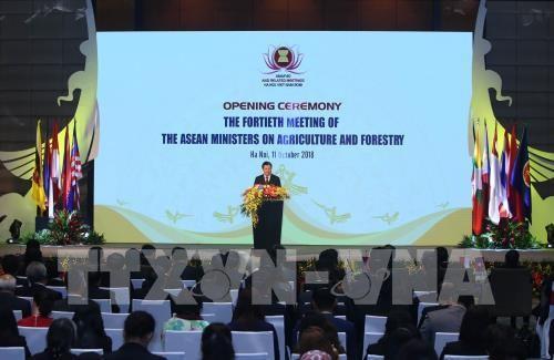 เปิดการประชุมรัฐมนตรีว่าการกระทรวงการเกษตรและป่าไม้อาเซียนครั้งที่40 - ảnh 1