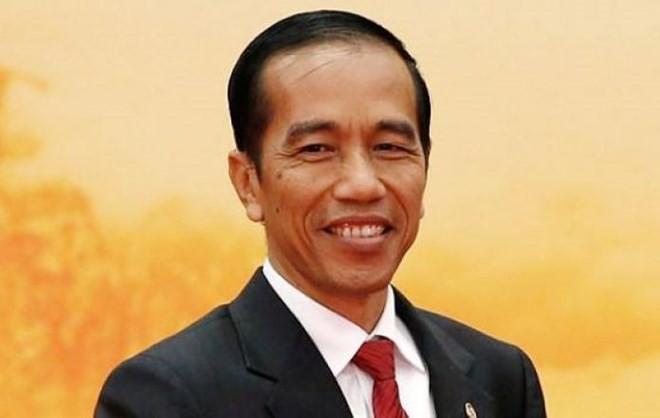 นาย โจโก วิโดโดได้รับเลือกให้ดำรงตำแหน่งประธานาธิบดีอินโดนีเซียอีกสมัย - ảnh 1