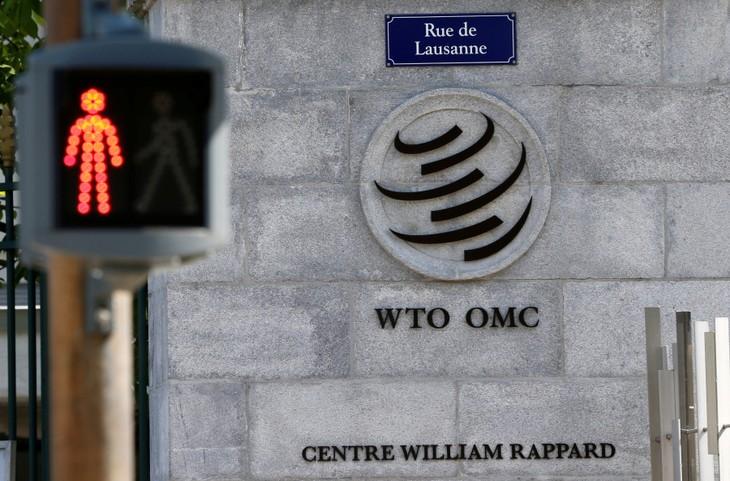 สหรัฐและ WTO ปัญหาที่ยังไม่ได้รับการแก้ไข - ảnh 1