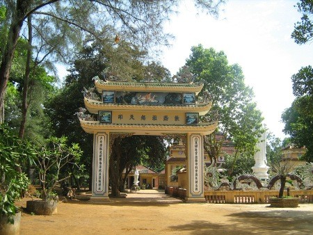 Touring scenic spots in Quang Ngai - ảnh 2