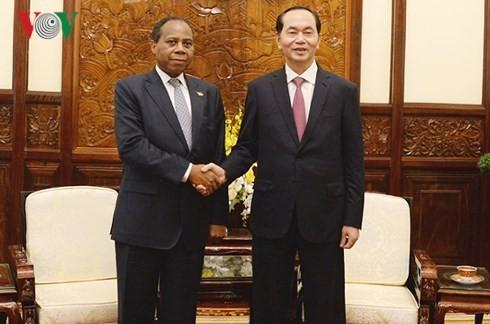 President Tran Dai Quang receives outgoing Mozambique ambassador - ảnh 1