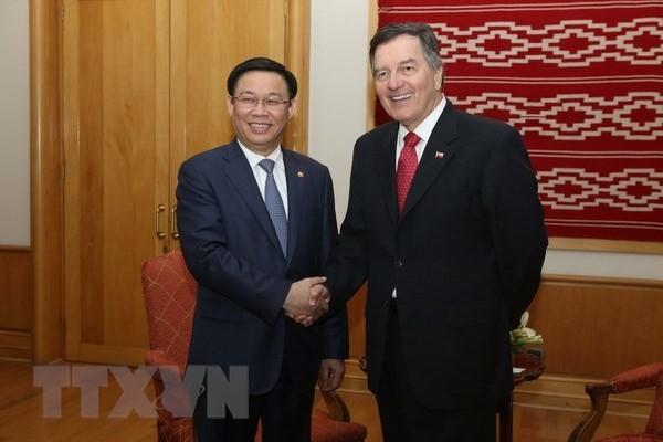 Chile – Vietnam's important Latin American partner: Deputy PM - ảnh 1