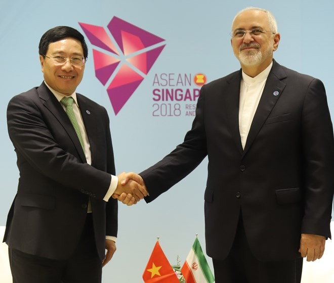 Vietnamese Deputy PM meets with top diplomats of Japan, Iran - ảnh 2