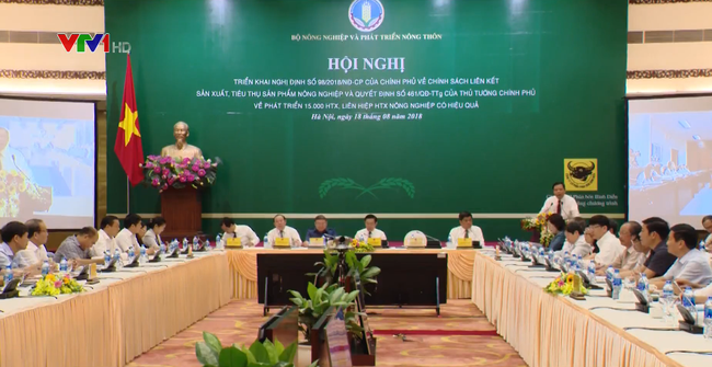Conference on promoting cooperative economy convened - ảnh 1