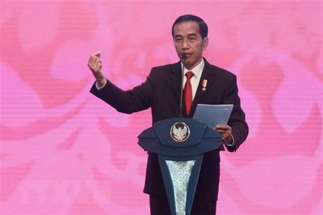 Vietnam-Indonesia cooperation enhanced - ảnh 1
