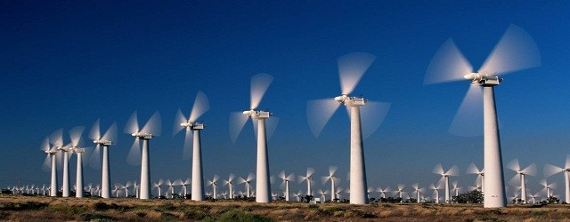 Vietnam sees huge potential for wind power development - ảnh 1