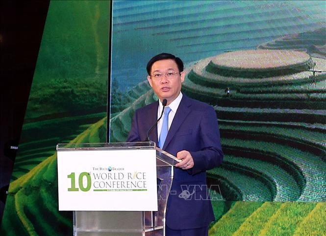 Vietnam busca mejorar calidad y valor de su arroz - ảnh 1