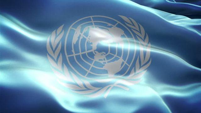 Vietnam raises its status in UN - ảnh 1