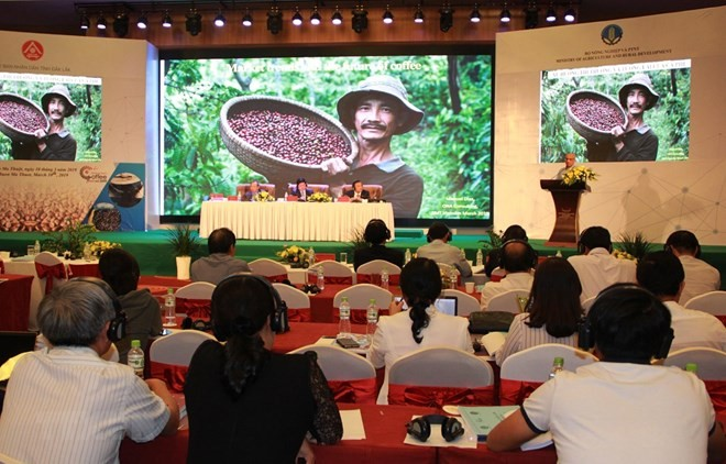 Vietnam promotes production of specialty coffee - ảnh 1
