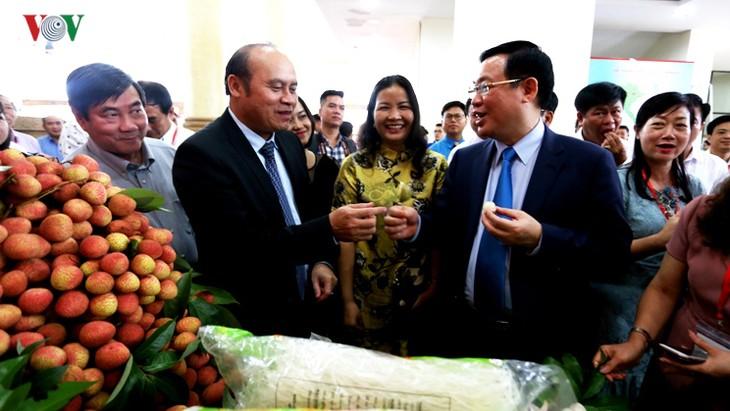 Seminar on promoting Bac Giang litchis opens - ảnh 1