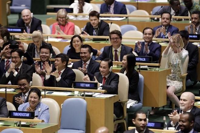 Vietnam's international status raised in holding UNSC non-permanent seat - ảnh 1
